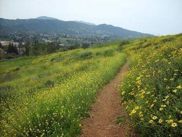 Conejo Valley Botanical Garden A Gentler Hike The Weekday Trailblazers Agoura Hills Ca