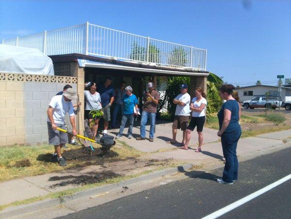 Successful summer fruit tree planting garden pool for Garden pool meetup