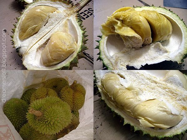 13 Aug16 - Machap Durian Buffet+ Relax at Malacca Town starting at Malacca Malaysia