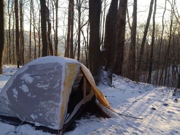 Frozen Head State Park Camping With Dogs