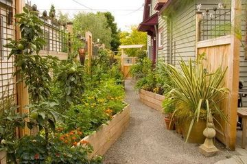 Workshop : Build your own Kitchen Garden - Breathe - Greener and ...