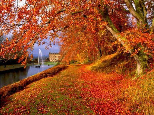 fall wallpaper italy - photo #37
