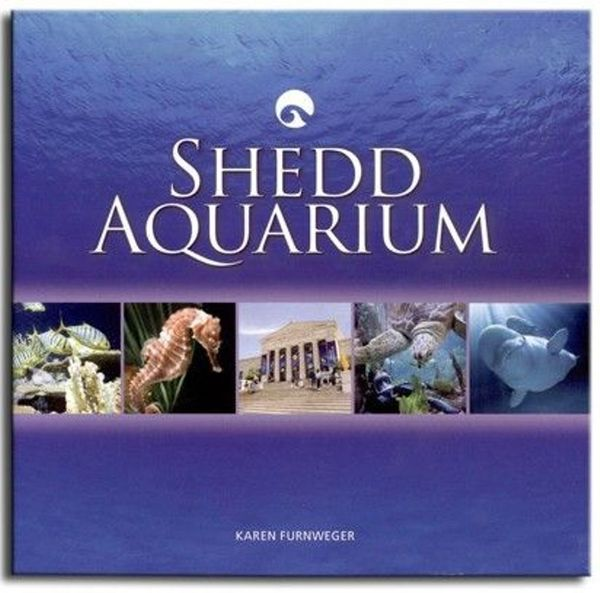 Jazzin The Shedd Aquarium Planned Elite Travel And