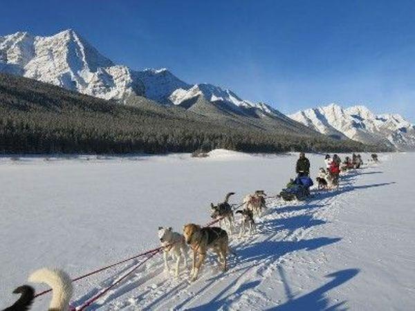 Aurora Borealis (Northern Lights) Winter CNY Escapade - 10 Days / 9 Nights starting at Canadian Rockies, AB