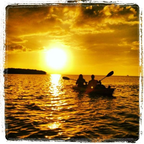 Sunset Paddle Tour @ Gill Dawg | Port Richey | Florida | United States