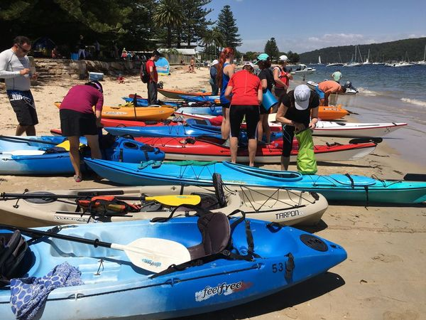 - NEED A KAYAK: Fish n Chip Paddle, Pittwater