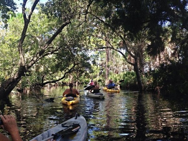 Experience Werner-Boyce Salt Springs @ Gill Dawg | Port Richey | Florida | United States