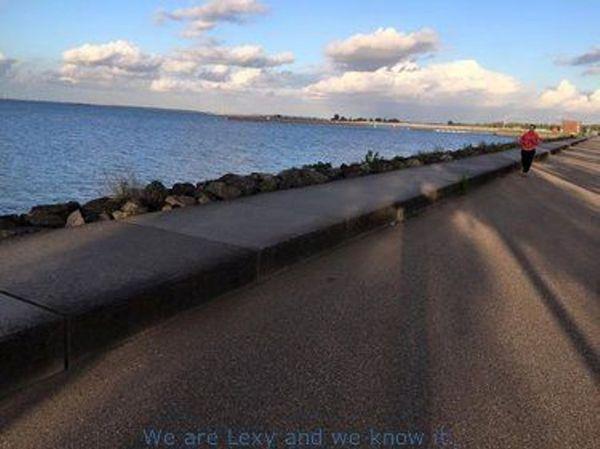 Private bike ride in unexpected Amsterdam: IJburg