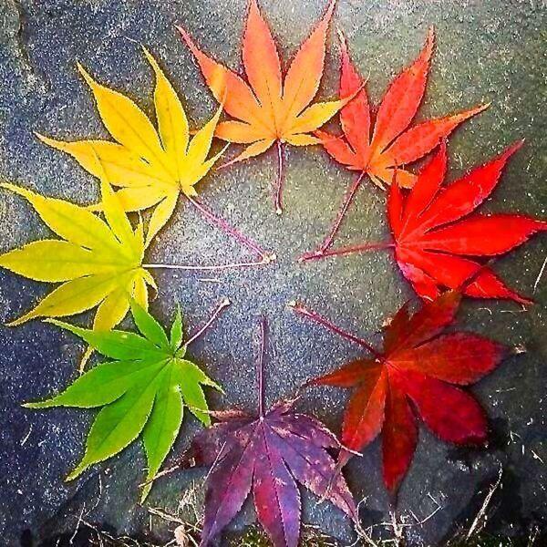 Autumnal Equinox Pagan at Autumn Equinox we Mark The