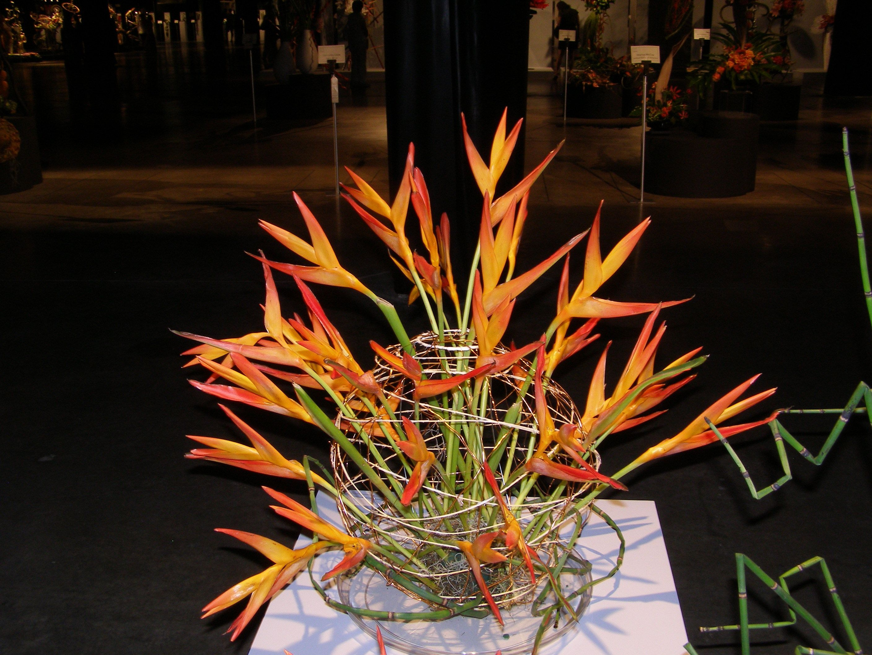 Japanese Flower Arranging Boston MA