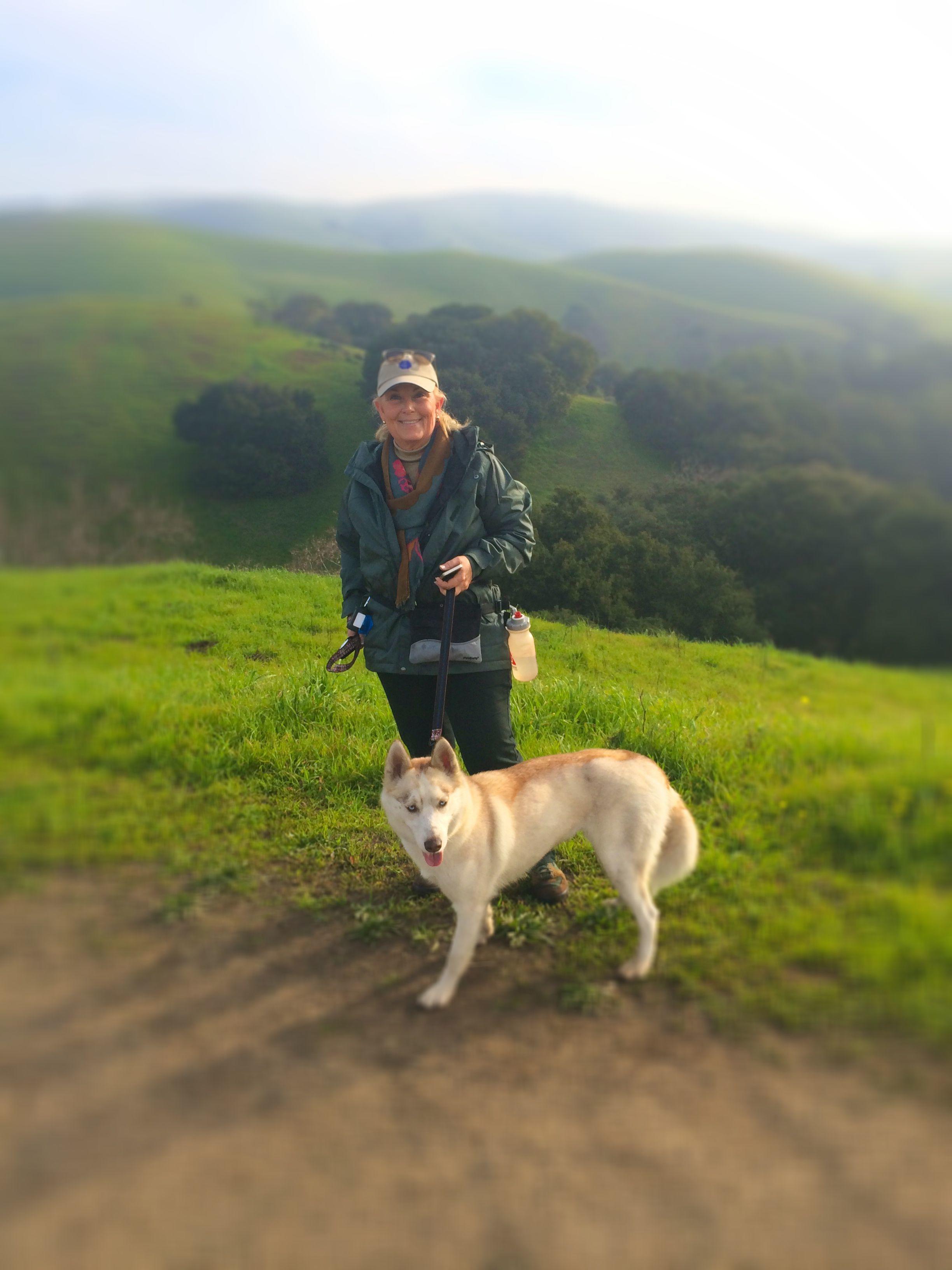 Nilif Dog Training