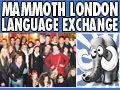 Mammoth London Language Exchange
